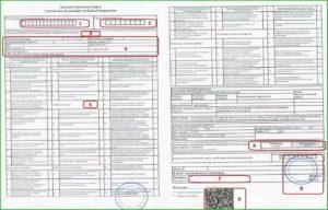 Новый перечень документов для техосмотра автомобиля