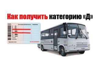 Высшая категория D: как открыть в водительских правах